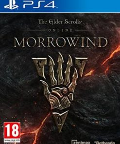PS4 The Elder Scrolls: Morrowind