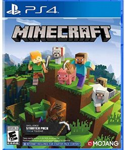 PS4 Minecraft Starter Edition